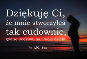 ŻS 17